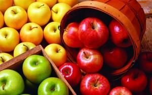 Mit kezdjek a terméssel? - alma