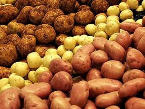 A tökéletes krumplis köret