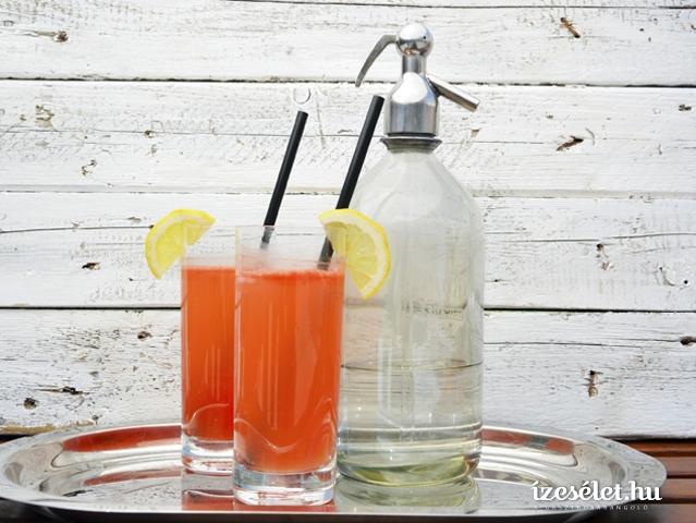 Görögdinnyés limonádé