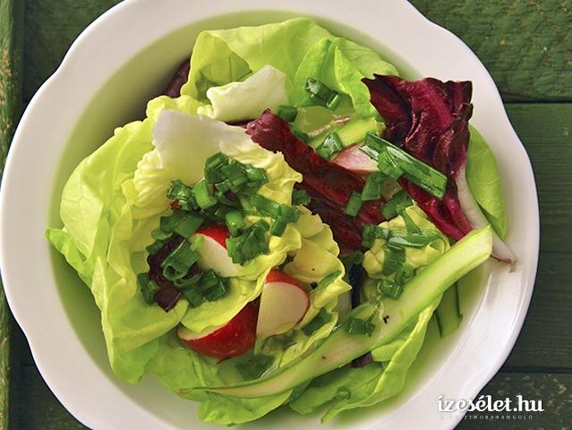 Friss tavaszi saláta
