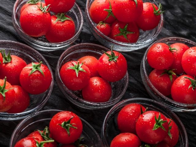 Hol tároljuk a paradicsomot? Hűtőben? Vagy ne ott?