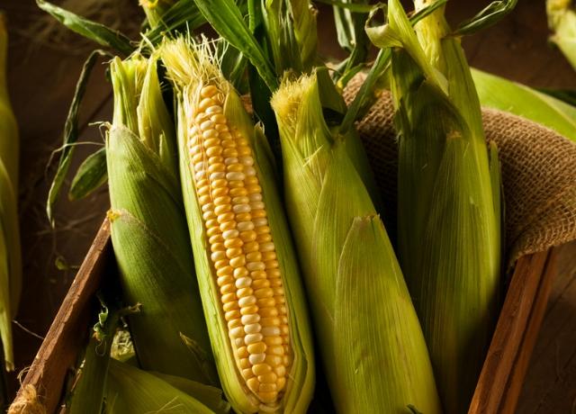 Miért együnk kukoricát?