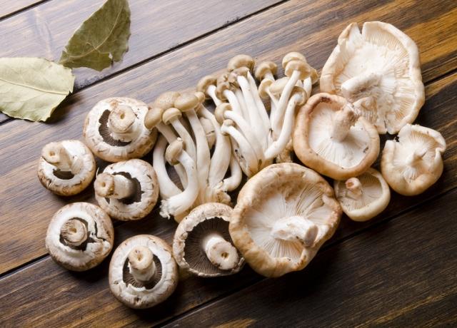 Ezeket a gombákat mindenkinek ismernie kell