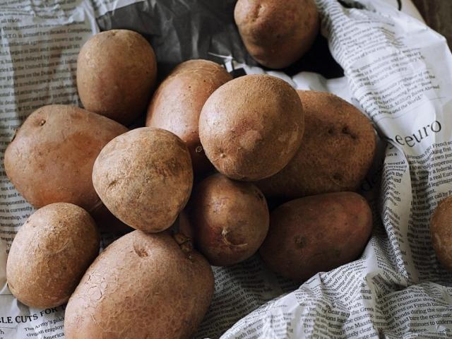 Krumplis receptek bloggereinktől