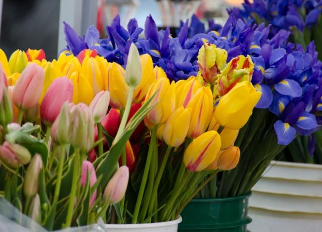 Így marad tovább szép a vágott virág