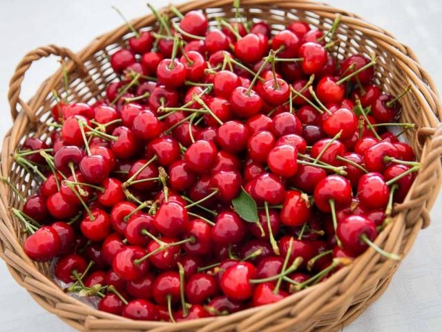 Új meggyfajta válthatja ki napi C-vitamin bevitelünket