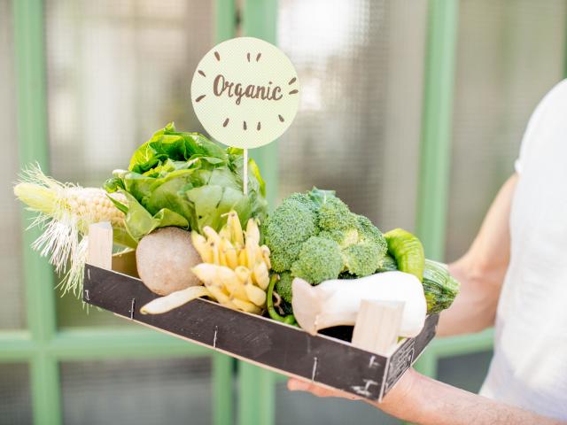 Jó fehérjeforrások-e a zöldségek?