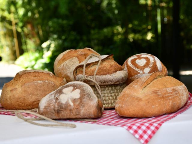 Megvannak Magyarország legjobb kenyerei