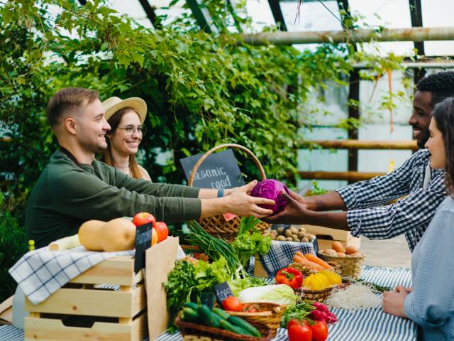 Az őszi piac sztárjai csak arra várnak, hogy jól megtöltsük őket