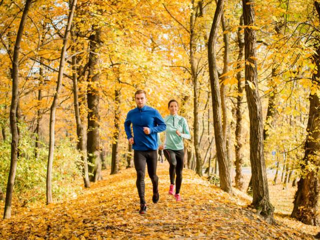 Életmódváltás ősszel – hogyan adjuk le a nyáron felszedett felesleget?