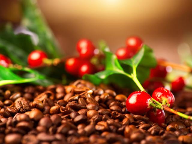 Hogyan lesz a kávébab héjából autóalkatrész?