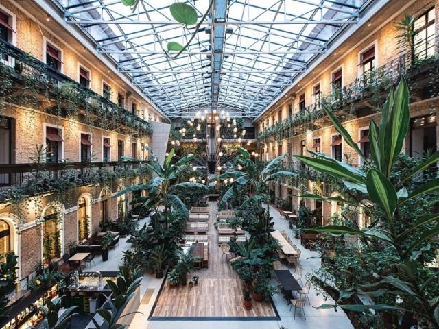 500 növény között meditálhatunk Budapest legzöldebb kertjében