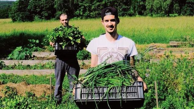 Legyen zöld! Hódít a környezettudatosság az éttermek világában