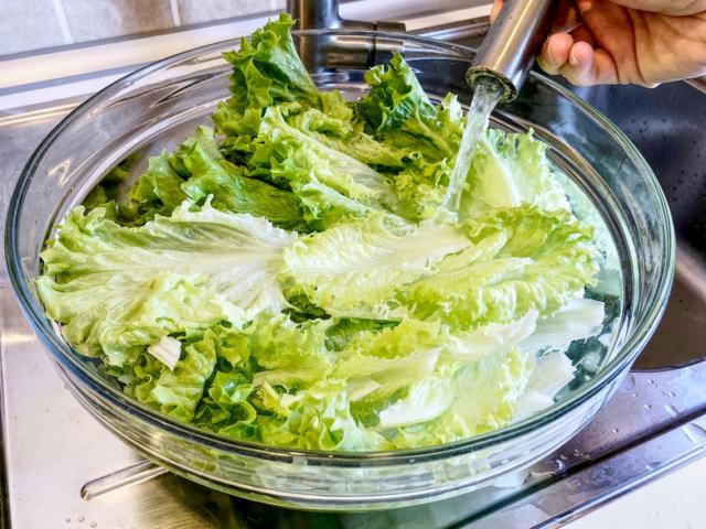 Hogyan kell megfelelően megmosni a salátát?