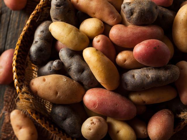 Hogyan tároljuk a burgonyát?