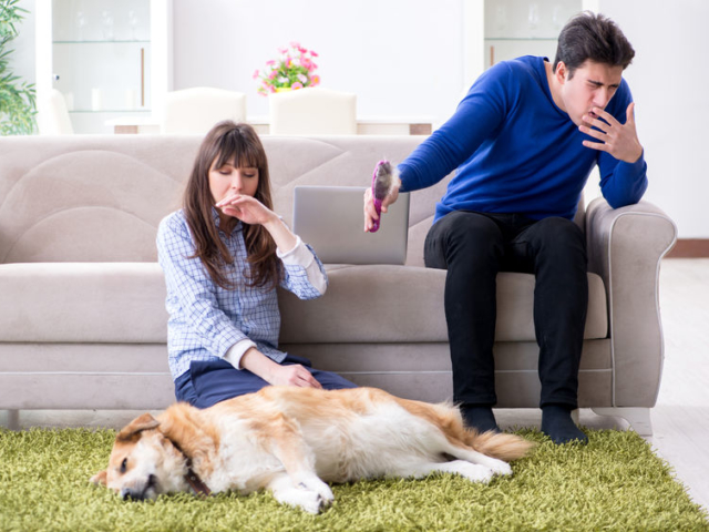 Az otthonod is lehet veszélyes, ha allergiás tünetekkel küzdesz