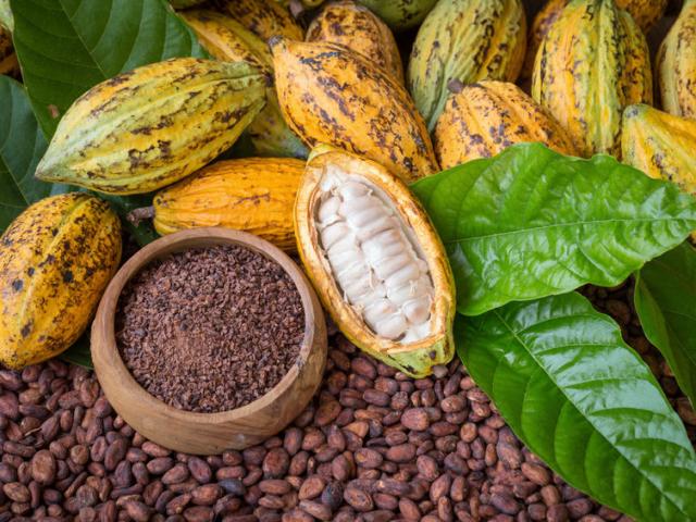 7 kevésbé ismert tény a csokoládéról