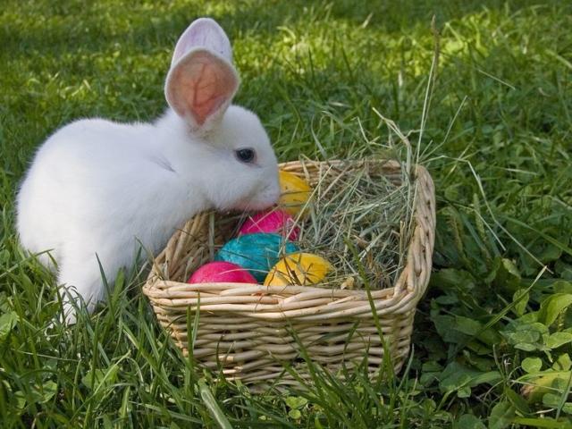 Idén sem marad el a húsvét! 3 tipp a kiegyensúlyozott ünnepért