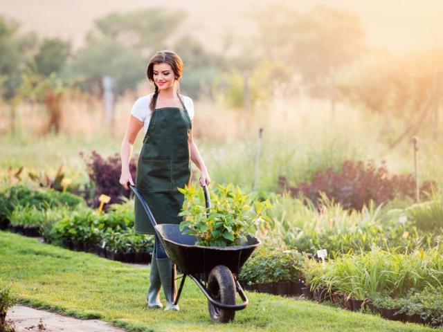 Kertészkedsz? Tudod, hogy felérhet a rendszeres edzéssel?