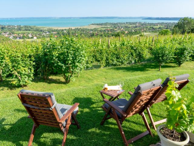 Elkészült a nagy Balatoni Sörkalauz: a tópart legjobb sörei egy helyen