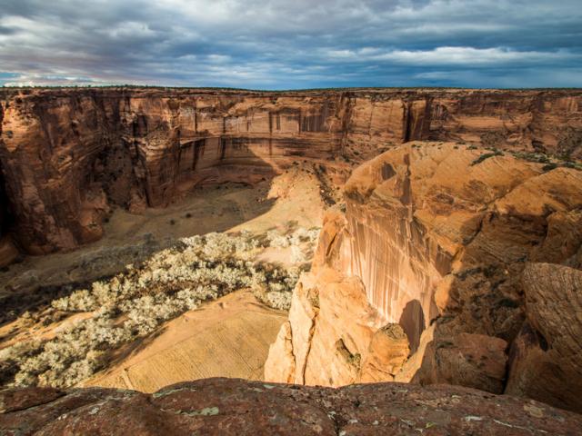 Mindenki fellélegezhet, egy arizonai lány megmenti a navahó barackot
