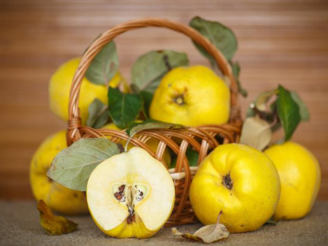Vénusz szent gyümölcse az arany birsalma